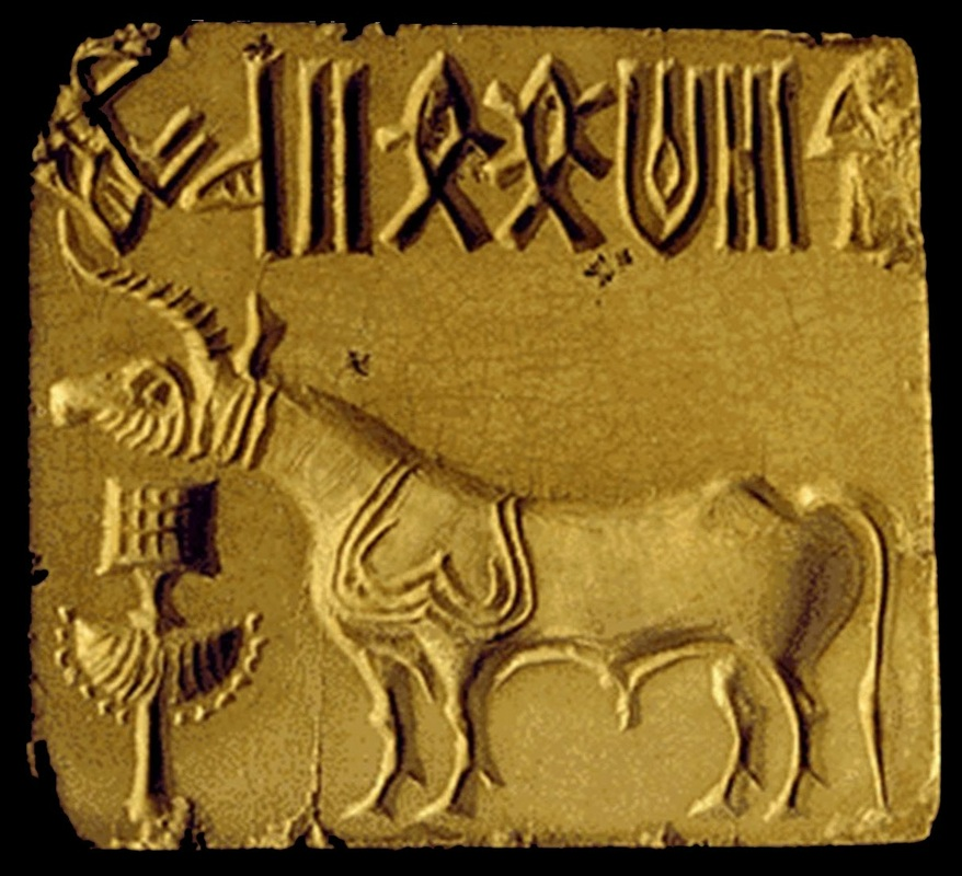 Religion and Culture - The Indus Valley Civilization